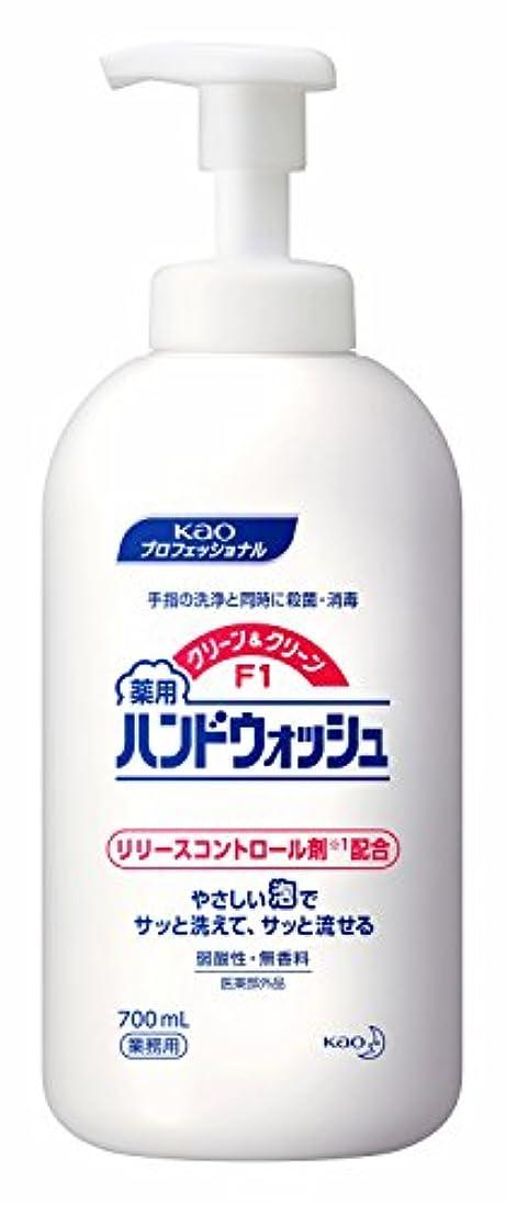 落胆した始まり掃く【ケース販売】花王 クリーン&クリーンF1薬用ハンドウォッシュ 700ml×6本