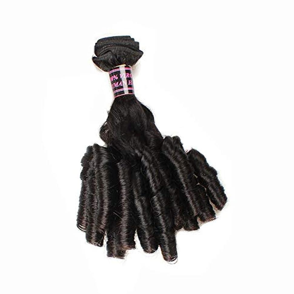 歌詞ショート要塞BOBIDYEE ブラジルのFunmi人間の髪の毛ショートカーリー織り緩い波スパイラルカール髪の束ロールプレイングかつら女性のかつら (色 : 黒, サイズ : 16 inch)