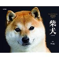 カレンダー2020 柴犬 (ヤマケイカレンダー2020)