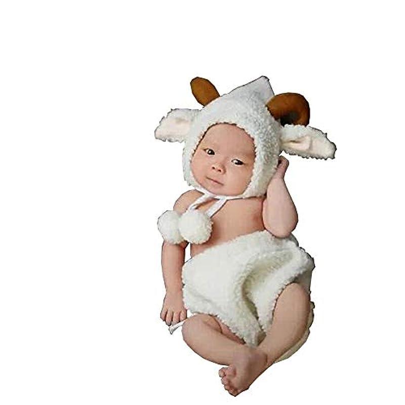 記念日ブラウス計算ベビー用着ぐるみ コスチューム 寝相アート 新生児 赤ちゃん 写真を撮る道具 男女共用