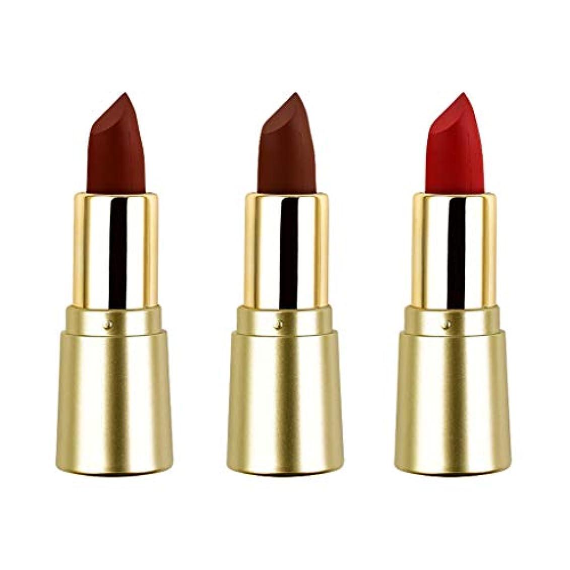 血まみれのピッチャーラッチT TOOYFUL リップスティック ミニマット 口紅セット かわいい 長持ち色 防水 化粧品 メイクアップ 3色セット