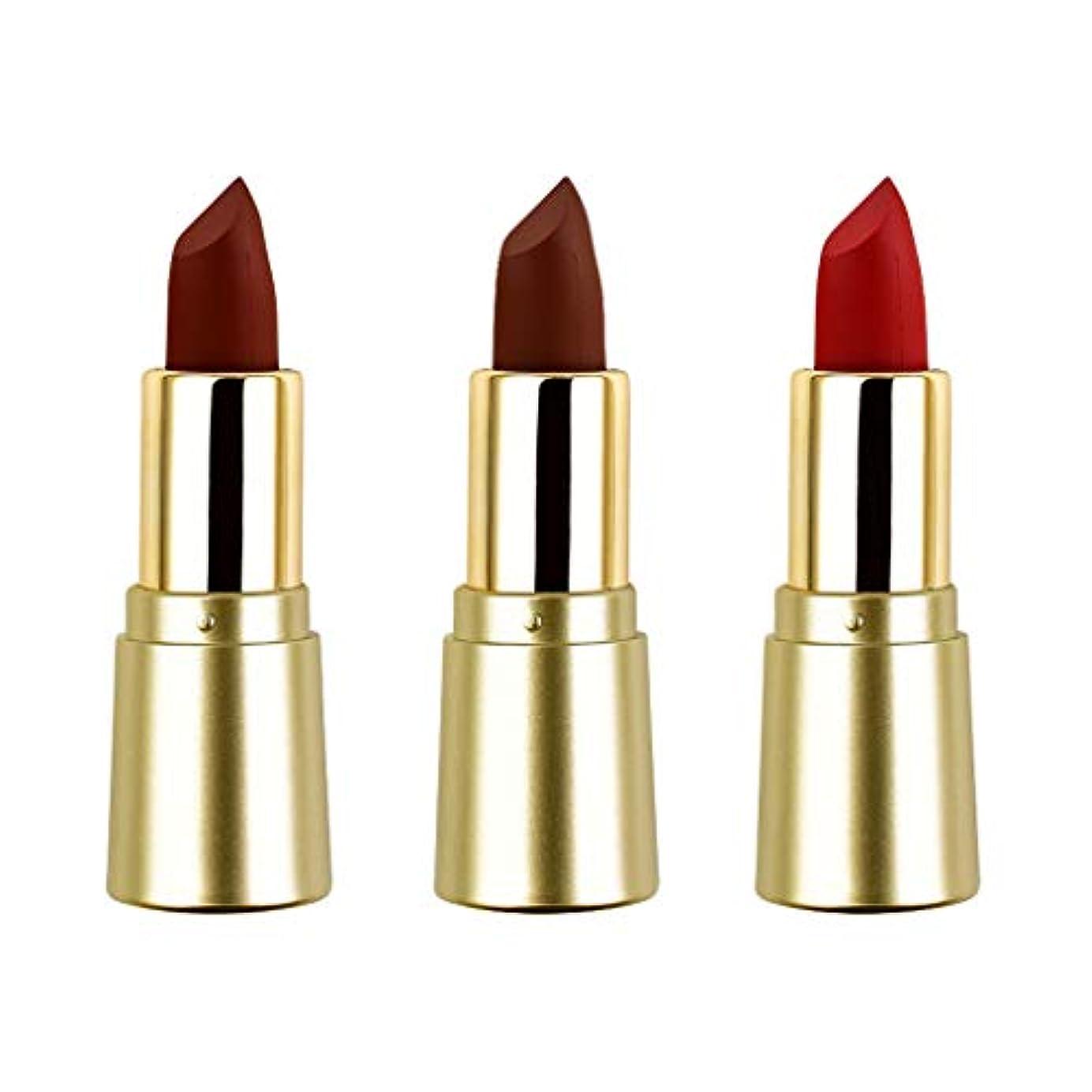 アライアンス溶接不安定T TOOYFUL リップスティック ミニマット 口紅セット かわいい 長持ち色 防水 化粧品 メイクアップ 3色セット