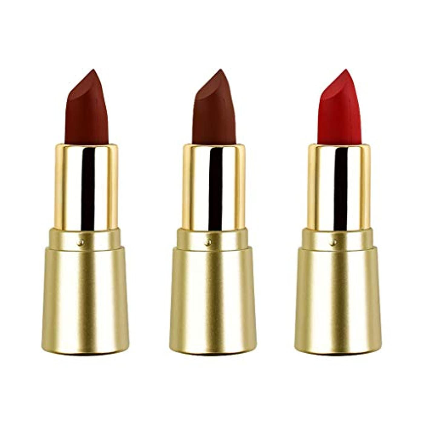 コンプリート賢い章T TOOYFUL リップスティック ミニマット 口紅セット かわいい 長持ち色 防水 化粧品 メイクアップ 3色セット