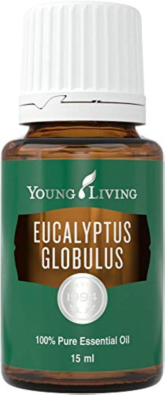 黒くする制限する小屋ヤングリビング Young Living ユーカリグロビュラス Eucalyptus Globulus エッセンシャルオイル 15ml