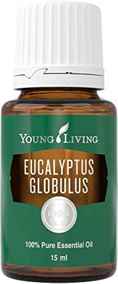 火山学者メイト緩めるヤングリビング Young Living ユーカリグロビュラス Eucalyptus Globulus エッセンシャルオイル 15ml