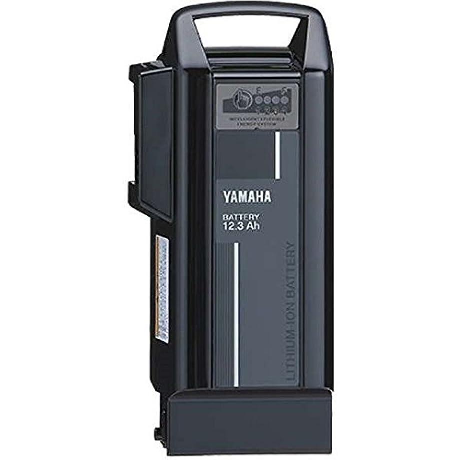 緩める革命的簿記係YAMAHA(ヤマハ) リチウムイオンバッテリー 12.3Ah X0T-82110-20 ブラック