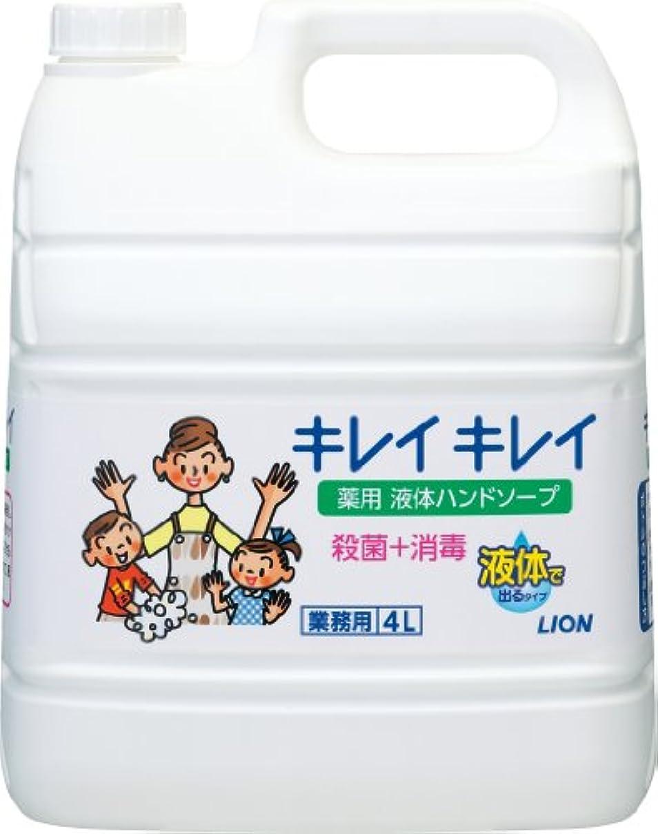 浜辺通常制限【業務用 大容量】キレイキレイ 薬用 ハンドソープ  4L(医薬部外品)