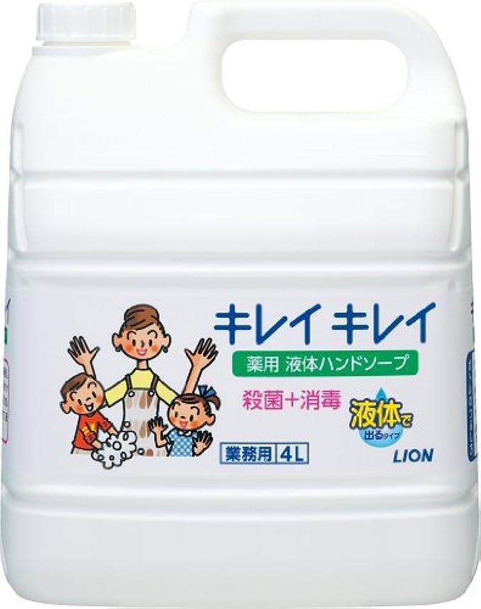 乱用不忠特派員【業務用 大容量】キレイキレイ 薬用 ハンドソープ  4L(医薬部外品)