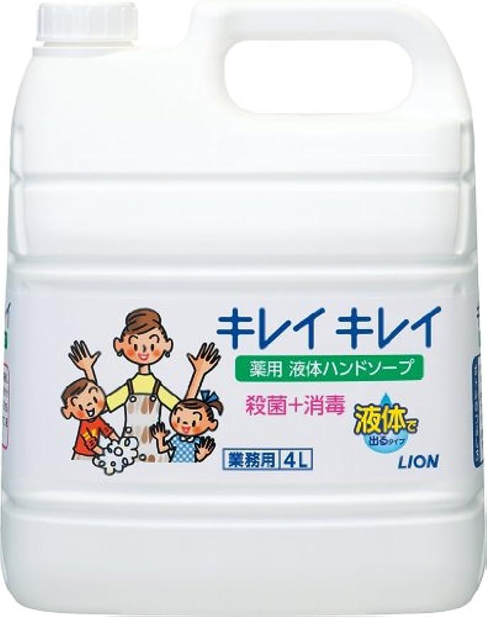 中断亡命引退する【業務用 大容量】キレイキレイ 薬用 ハンドソープ  4L(医薬部外品)