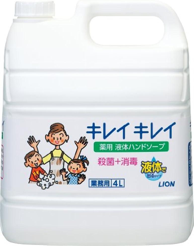 熱望する加害者七時半【業務用 大容量】キレイキレイ 薬用 ハンドソープ  4L(医薬部外品)