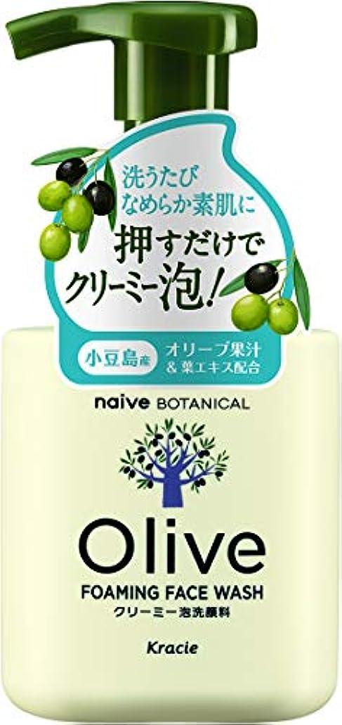 演劇彫る櫛オリーブの恵み ナイーブ ボタニカル クリーミー泡洗顔料160mL