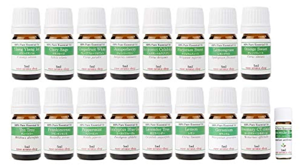部貴重なほとんどない【2019年改訂版】ease AEAJアロマテラピー検定香りテスト対象精油セット 揃えておきたい基本の精油 1?2級 17本セット各5ml