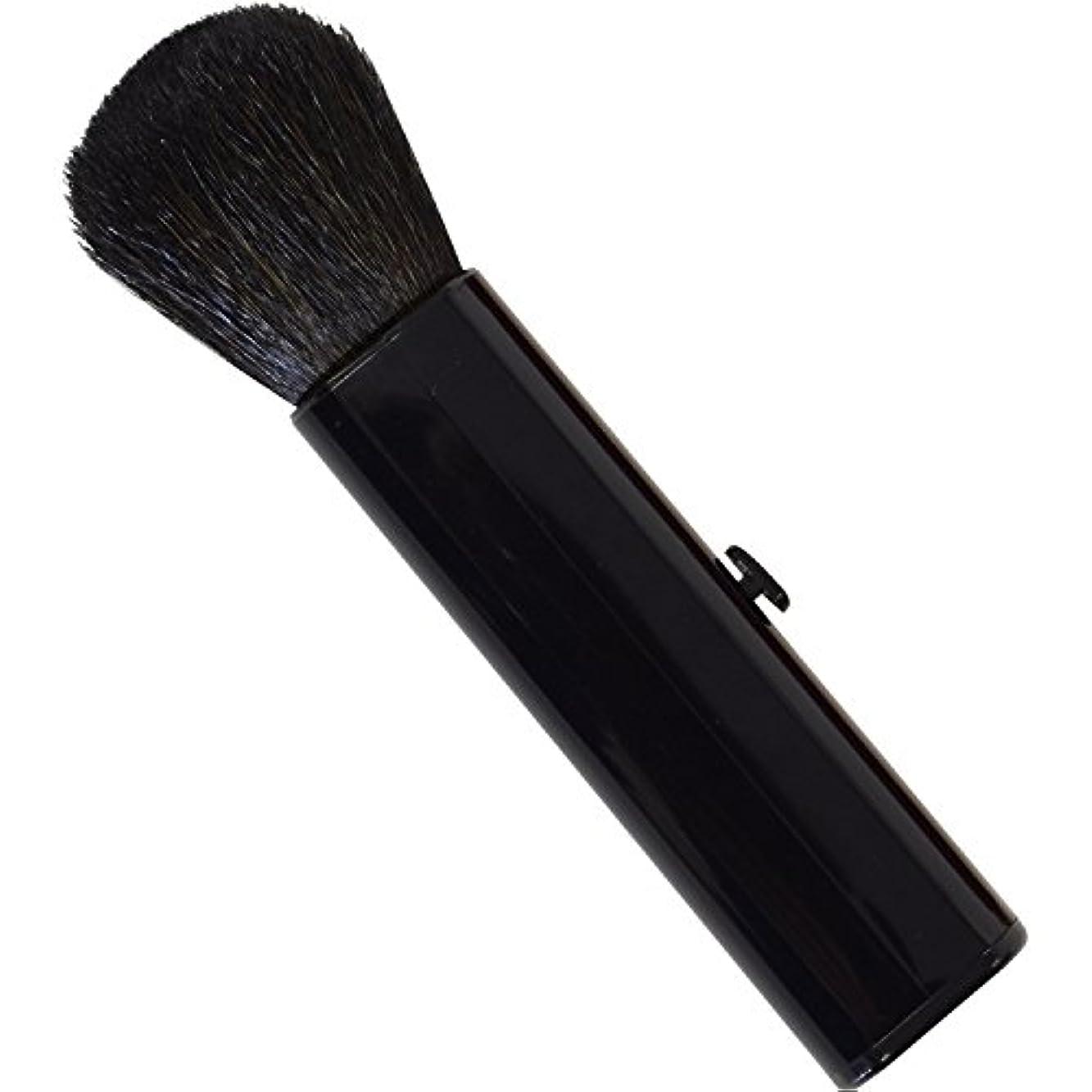 聴く遊具大脳SC-704BK 六角館さくら堂 スライドチークブラシ 黒 山羊毛100% シンプルなデザイン 便利なケース付き