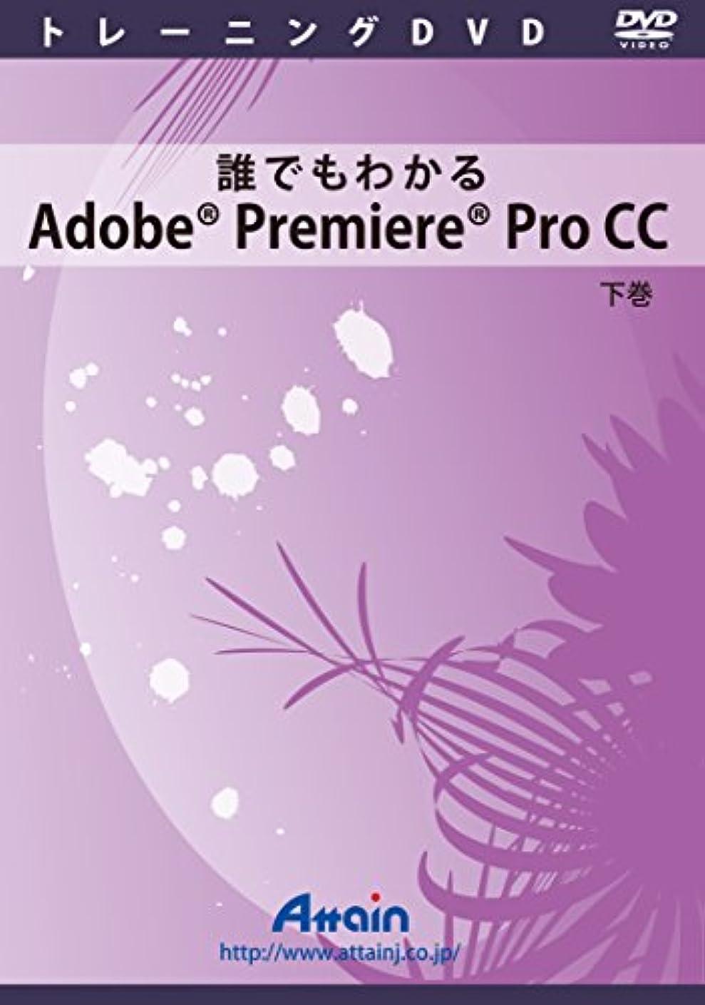 物理形状意味誰でもわかるAdobe Premiere Pro CC 下巻