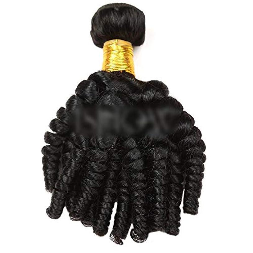 記念碑平凡ふつうHOHYLLYA Funmi巻き毛人間の髪の毛の束自然な黒髪エクステンション1バンドル髪横糸複合毛レースのかつらロールプレイングかつらロングとショートの女性自然 (色 : 黒, サイズ : 20 inch)