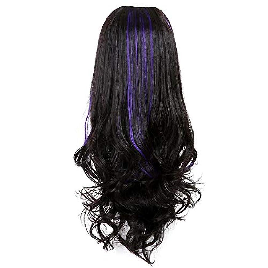 ところでメンダシティ筋SRY-Wigファッション 波状かつら高密度耐熱繊維漂白ノットグルーレス大部分スペースレースフロント合成かつら自然 (Color : ブラック, Size : フリー)