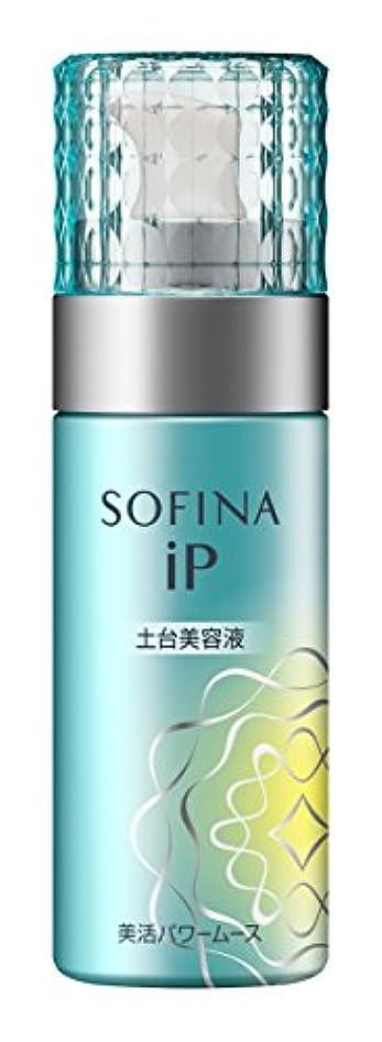 例外スペシャリスト繊細【お試しサイズ】ソフィーナiP 美活パワームース 55g
