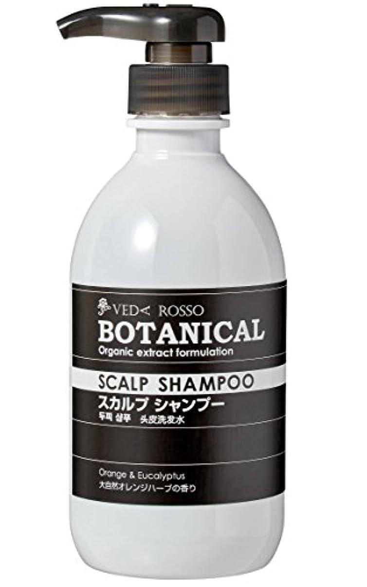 取り壊す散髪痛みヴェーダロッソ ボタニカルシャンプー 500ml x 2本セット
