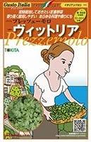 【プレッツェーモロ】ヴィットリア 小袋(200粒)(トキタ種苗)