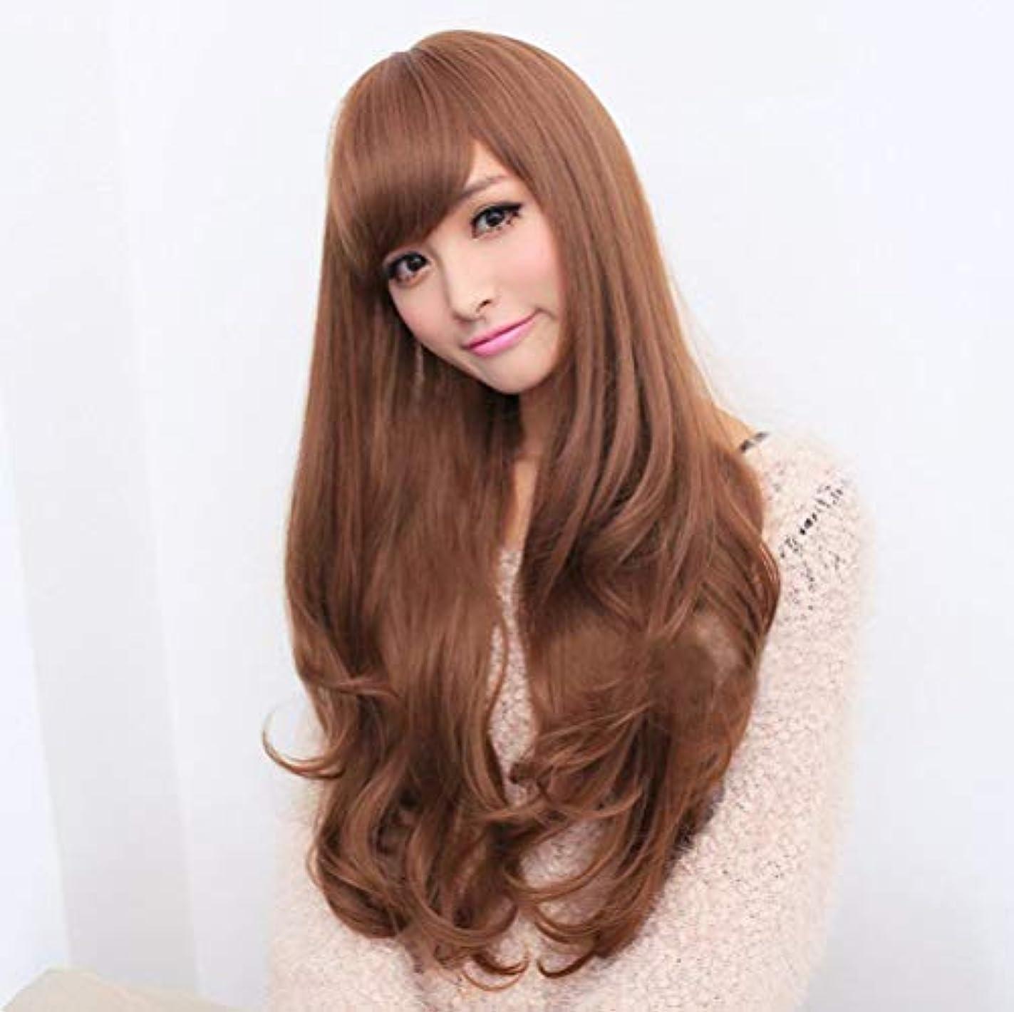 うっかり目指すフィットかつらブラジルストレートヘアウィッグ女性未処理ブラジルバージンヘアリネン65 cm