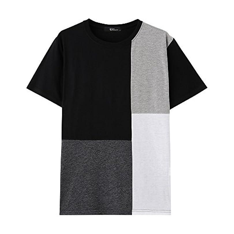 肺臨検極めて重要なReal Standard(リアルスタンダード) ブロック切り替え 半袖Tシャツ 381142MH メンズ