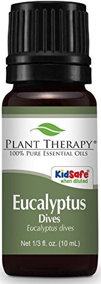 レンディション場所傾向があるPlant Therapy Eucalyptus Dives (Peppermint) Essential Oil 10 mL (1/3 oz) 100% Pure, Undiluted, Therapeutic Grade