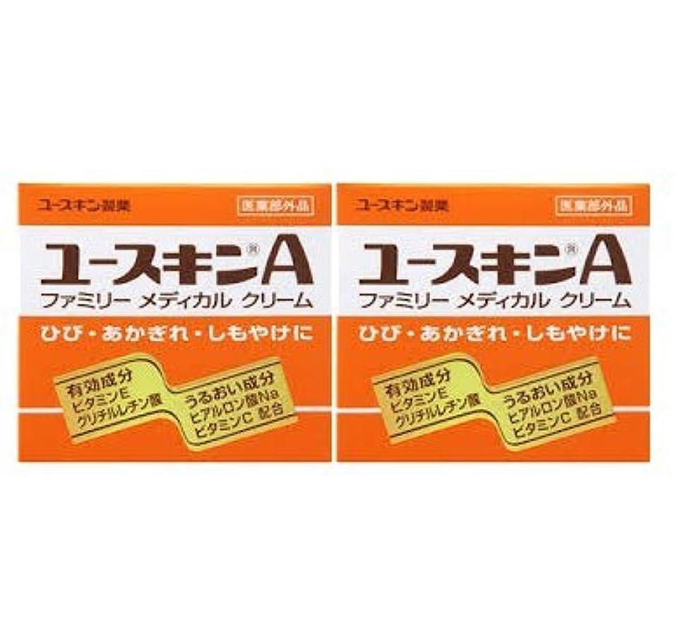 大騒ぎ力学南東【2個セット】ユースキンA ( 120g ) ( ハンドクリーム )