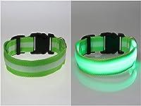 ナイロンペットの犬の襟ナイトの安全LEDライトアップ点滅グローをダークライト円形ペンダントの首輪 (XL, グリーン)
