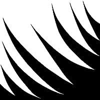 Palmetto [Analog]