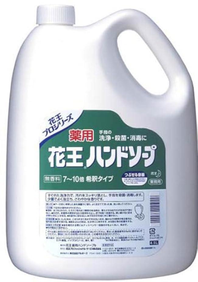 慣らすアーカイブ悔い改め4.5L 薬用ハンドソープ