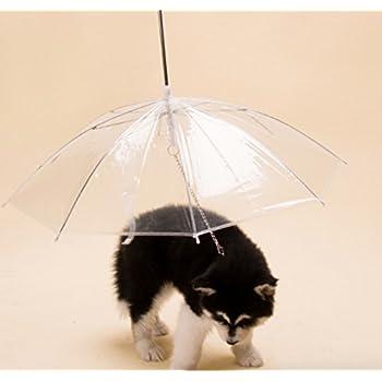 ペットアンブレラ 犬 傘 犬用 ペット 直径77cm 小型犬から中型犬まで アンブレラ 散歩 ペット用品 散歩グッズ ペット用 犬用傘 (直径77cm, 透明)