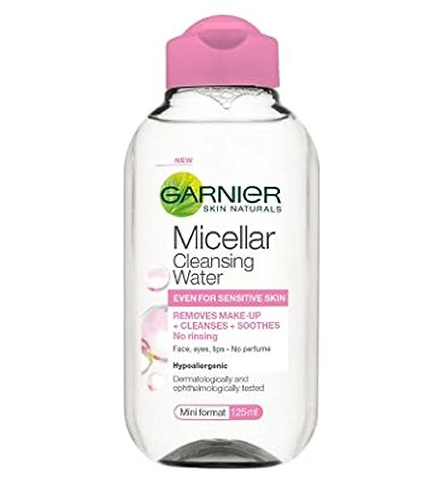歩行者ロビーエクスタシーガルニエミセル洗浄水125ミリリットル (Garnier) (x2) - Garnier Micellar Cleansing Water 125ml (Pack of 2) [並行輸入品]