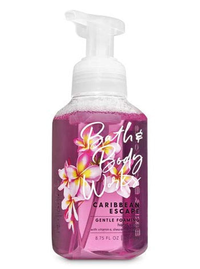 大邸宅寛大な手がかりバス&ボディワークス カリビアン エスケープ ジェントル フォーミング ハンドソープ Caribbean Escape Gentle Foaming Hand Soap