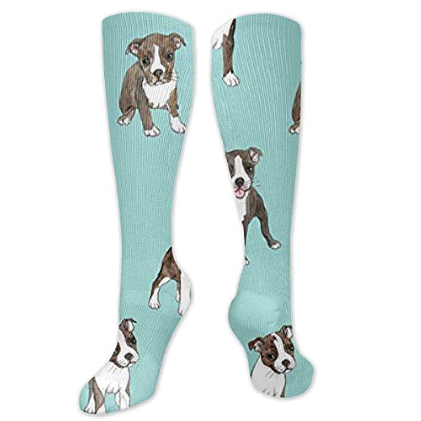 おなじみのスーダン資本主義靴下,ストッキング,野生のジョーカー,実際,秋の本質,冬必須,サマーウェア&RBXAA Little Boston Terrier Puppies Socks Women's Winter Cotton Long Tube...