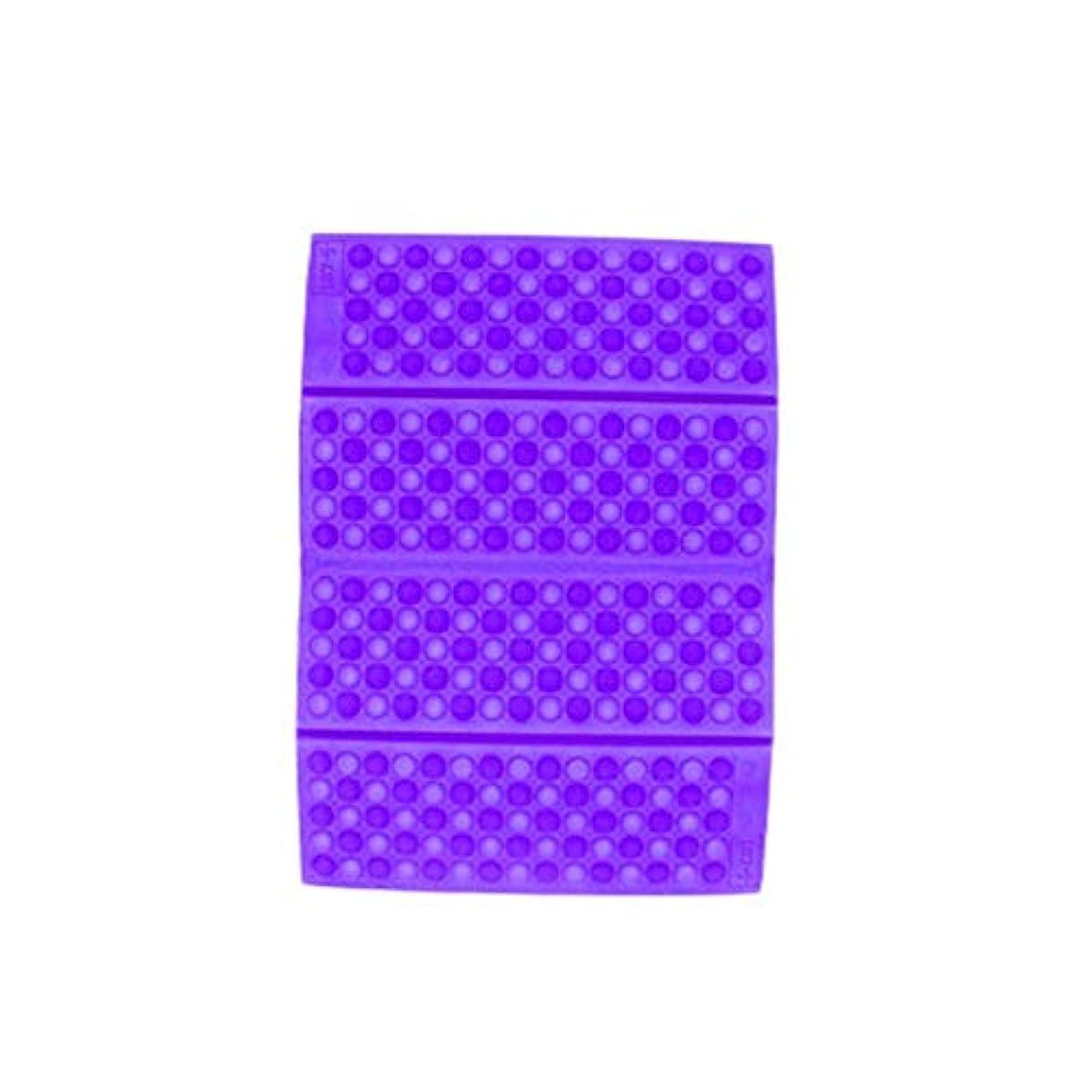 放棄するアイドル粘り強いポータブルXPE防湿ハニカムクッションパープル-パープル