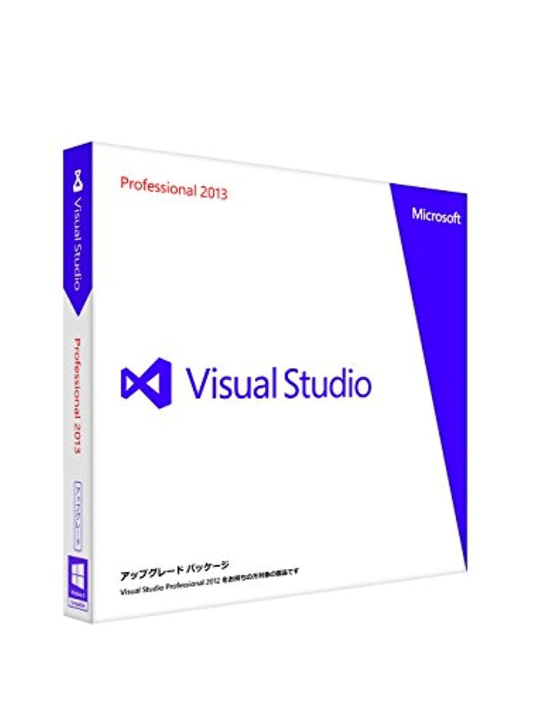 基礎交換害Microsoft Visual Studio Professional 2013 アップグレード版