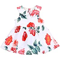 Newborn Baby Girl Dresses Clothes Flowers Ruffles Play Dress Sleeveless Fashion Dresses Outfits