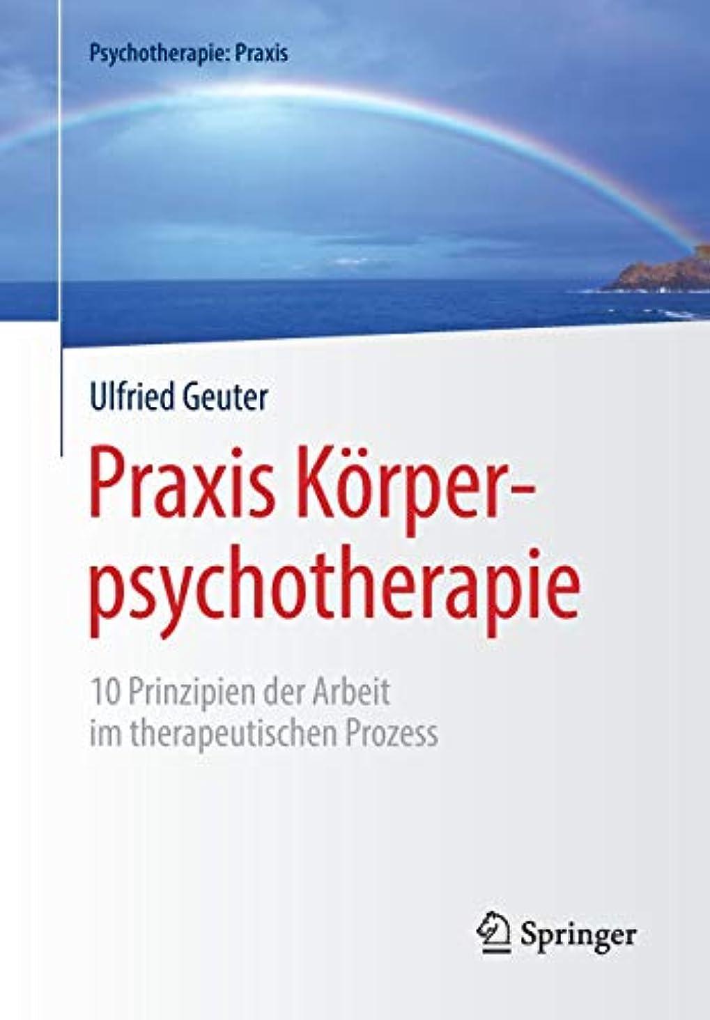 魂赤道マウンドPraxis Koerperpsychotherapie: 10 Prinzipien der Arbeit im therapeutischen Prozess (Psychotherapie: Praxis)