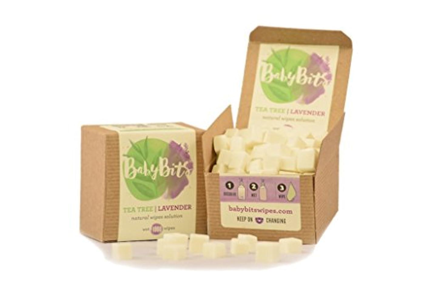 ブラウンレインコート伝えるBaby Bits Wipes Solution - Makes 1,000 Natural Wipes ??Made in the USA! by Baby Bits