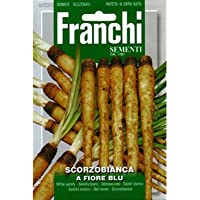 [ 西洋野菜 種 ] サラダゴボウ フィオレ ブリュ
