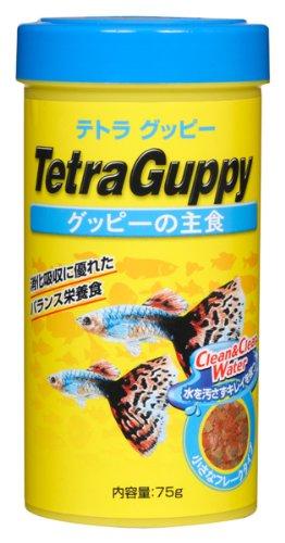 テトラ (Tetra) グッピー 75g