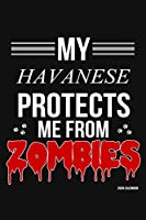 My Havanese Protects Me From Zombies 2020 Calender: Havanese 2020 Calender