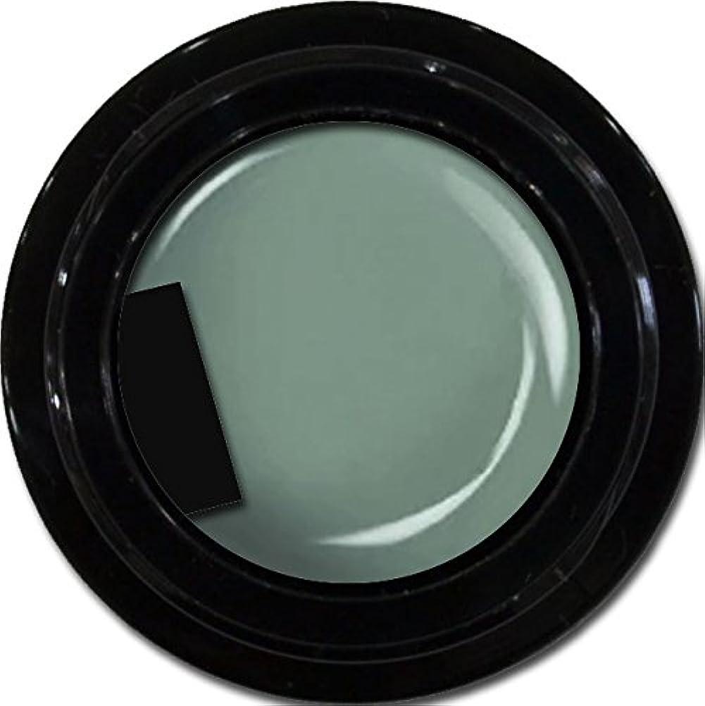 甘い要塞常習的カラージェル enchant color gel M716 Khaki 3g/ マットカラージェル M716 カーキー 3グラム