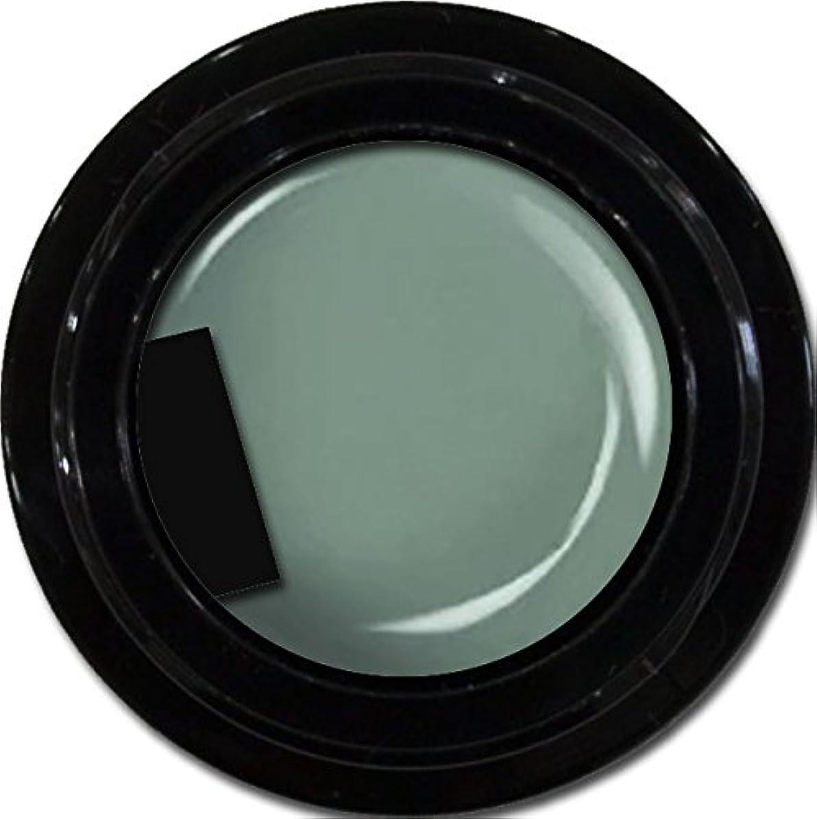カラージェル enchant color gel M716 Khaki 3g/ マットカラージェル M716 カーキー 3グラム