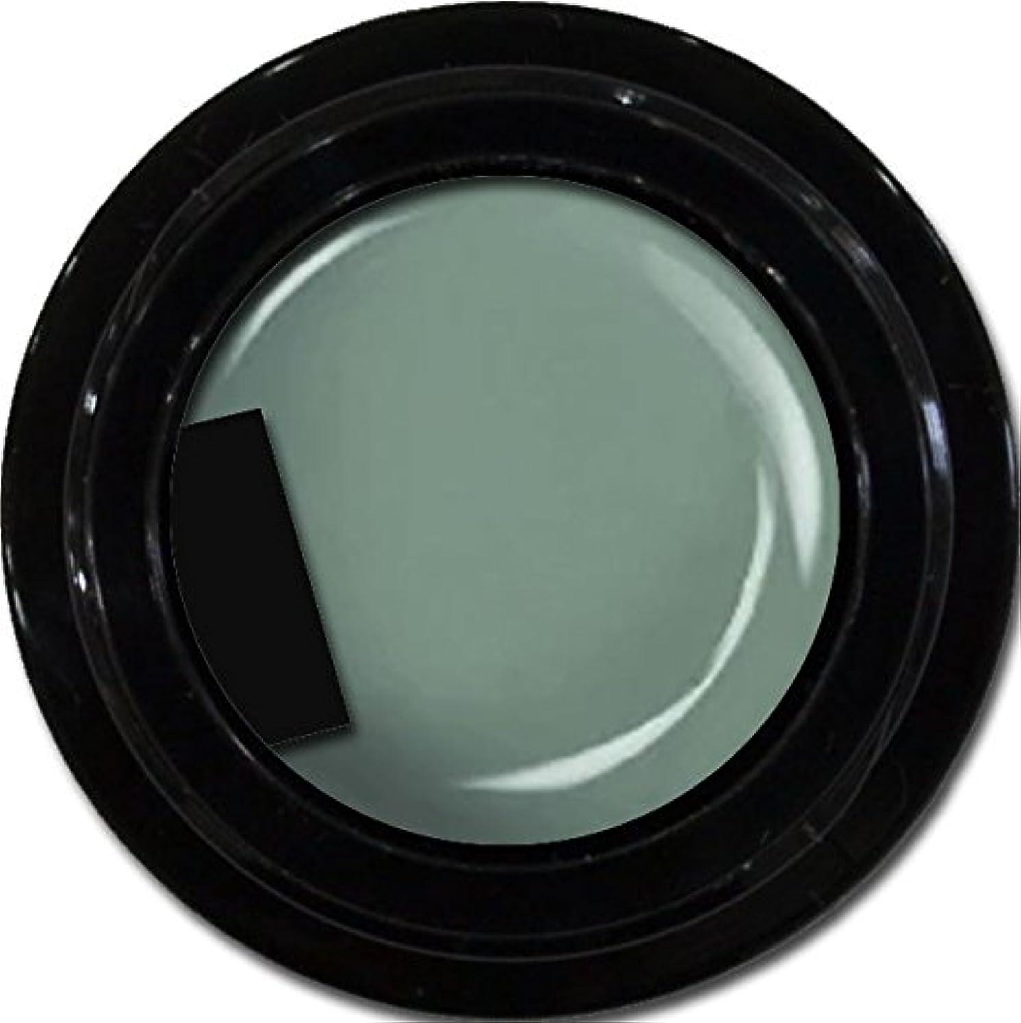 戦い冷酷な縮約カラージェル enchant color gel M716 Khaki 3g/ マットカラージェル M716 カーキー 3グラム