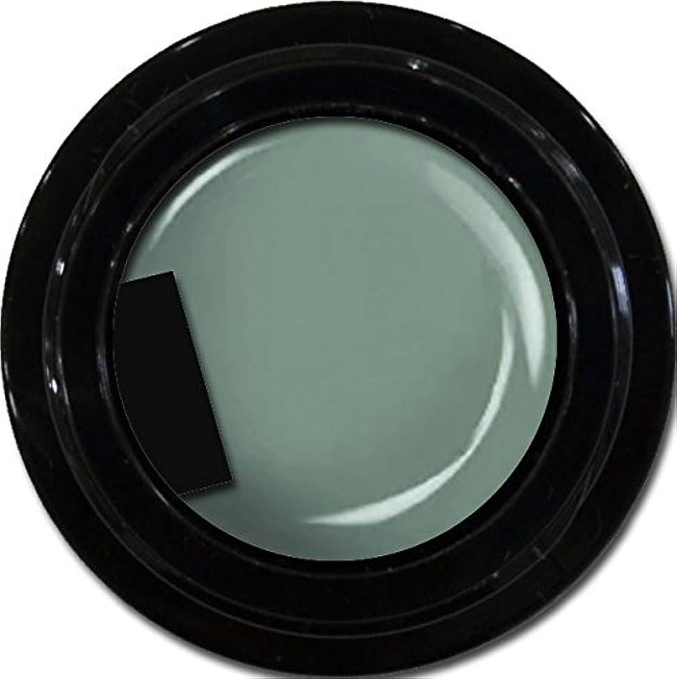 コミュニティ冗長つぶやきカラージェル enchant color gel M716 Khaki 3g/ マットカラージェル M716 カーキー 3グラム