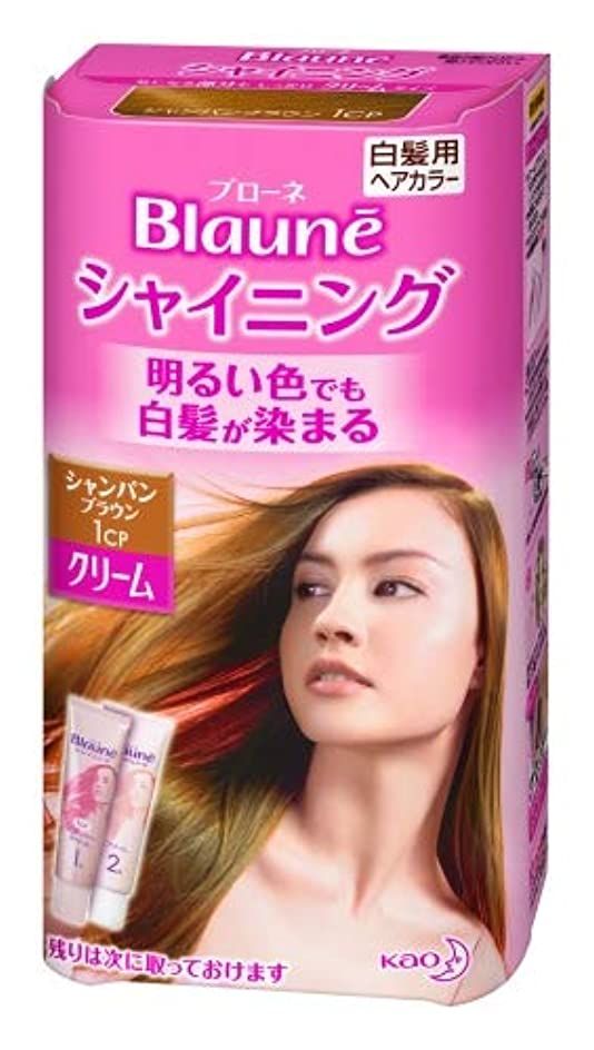 の面ではロッカー空の花王 ブローネ シャイニングヘアカラー クリーム 1剤50g/2剤50g(医薬部外品)《各50g》<カラー:シャンパンBR>