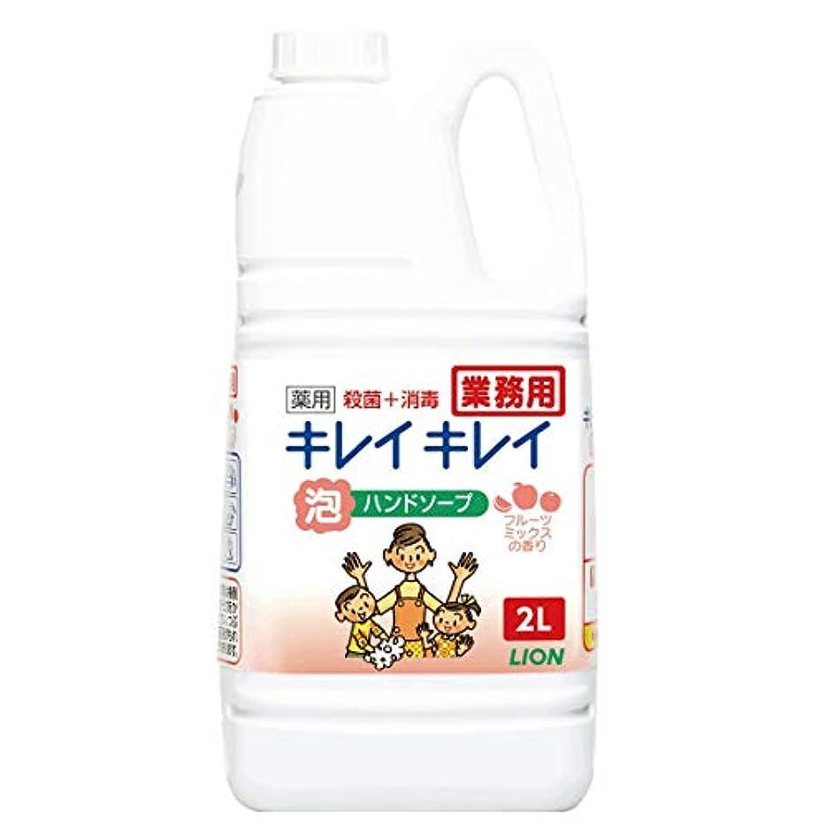 強調するナインへ眉をひそめる【大容量】キレイキレイ 薬用泡ハンドソープ フルーツミックスの香り 2L