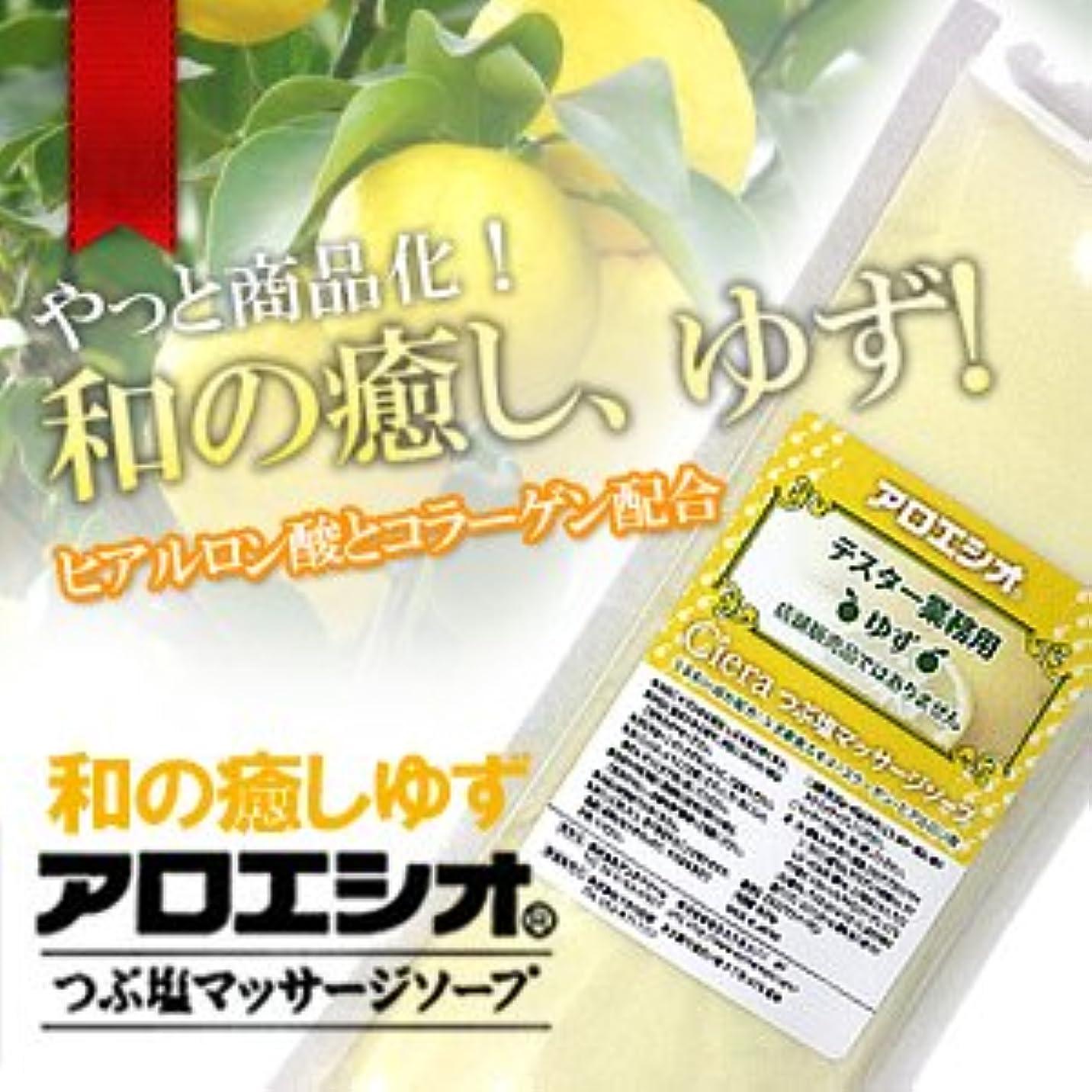 堂々たる全く評議会ゆず アロエ塩 800g つぶ塩マッサージソープ/フタバ化学 アロエシオ
