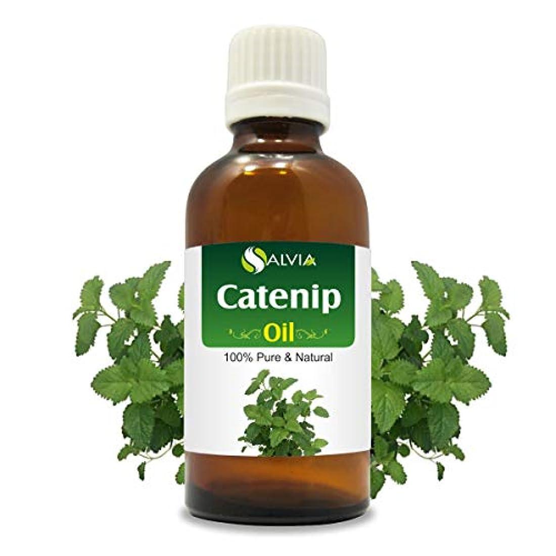 つぶす絶対にぞっとするようなCatnip Oil (Nepeta cataria) 100% Natural Pure Undiluted Uncut Essential Oil 15ml